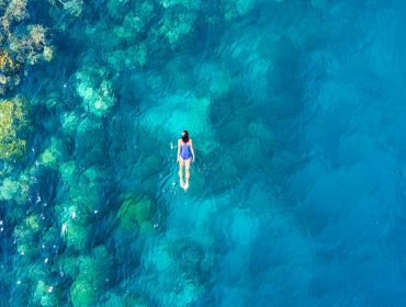 Barton & Gray cruises allow ample time for a swim or snorkeling.